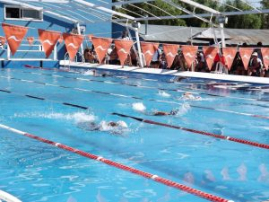 Polideportivo: Noticias del Club Pescadores y Náutica San Pedro