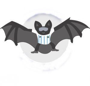 Viajó el equipo nacional «Los Murciélagos»