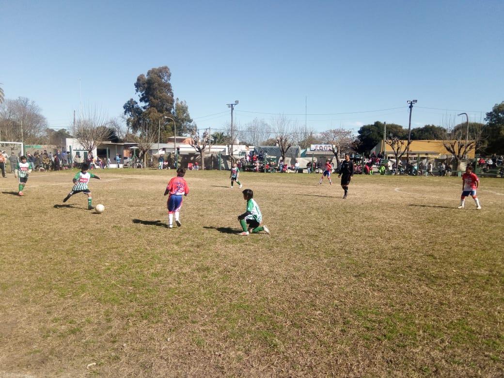 Fútbol Infantil: Los resultados de la fecha 20 del Torneo Apertura