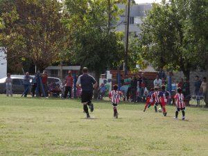 Baby fútbol: Las semifinales se jugarán en Agricultores y El Tanque