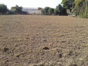 Independiente de Río Tala también se suma al arreglo del piso en la cancha