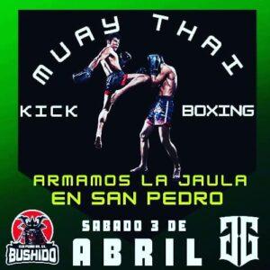 Lee más sobre el artículo Artes marciales mixtas en Paraná FC