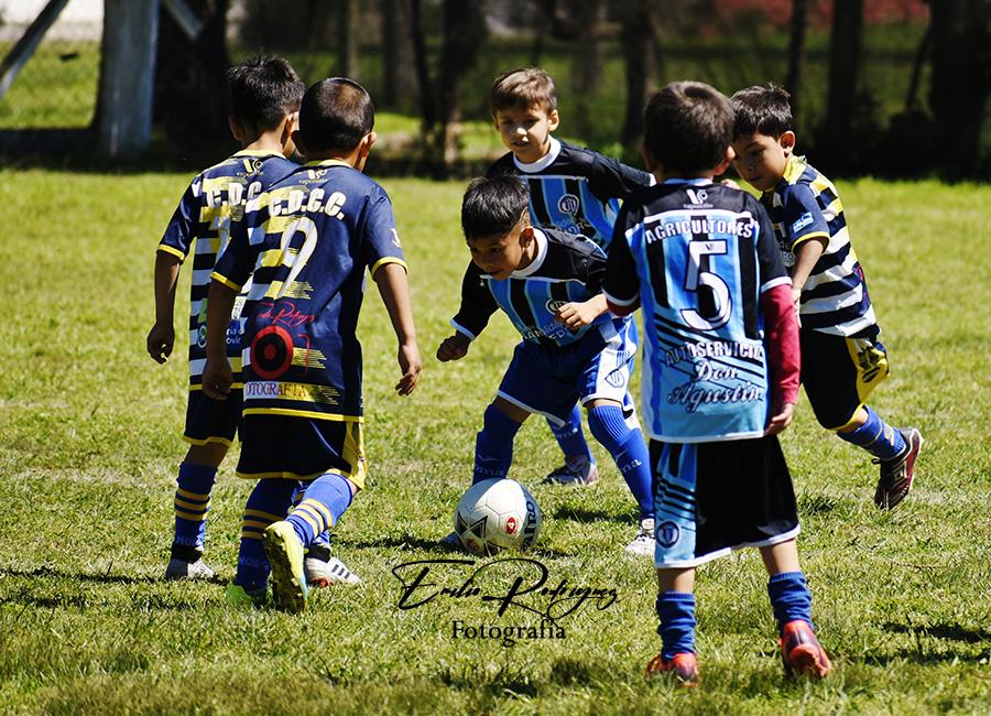 Lee más sobre el artículo Baby fútbol: los partidos para el sábado